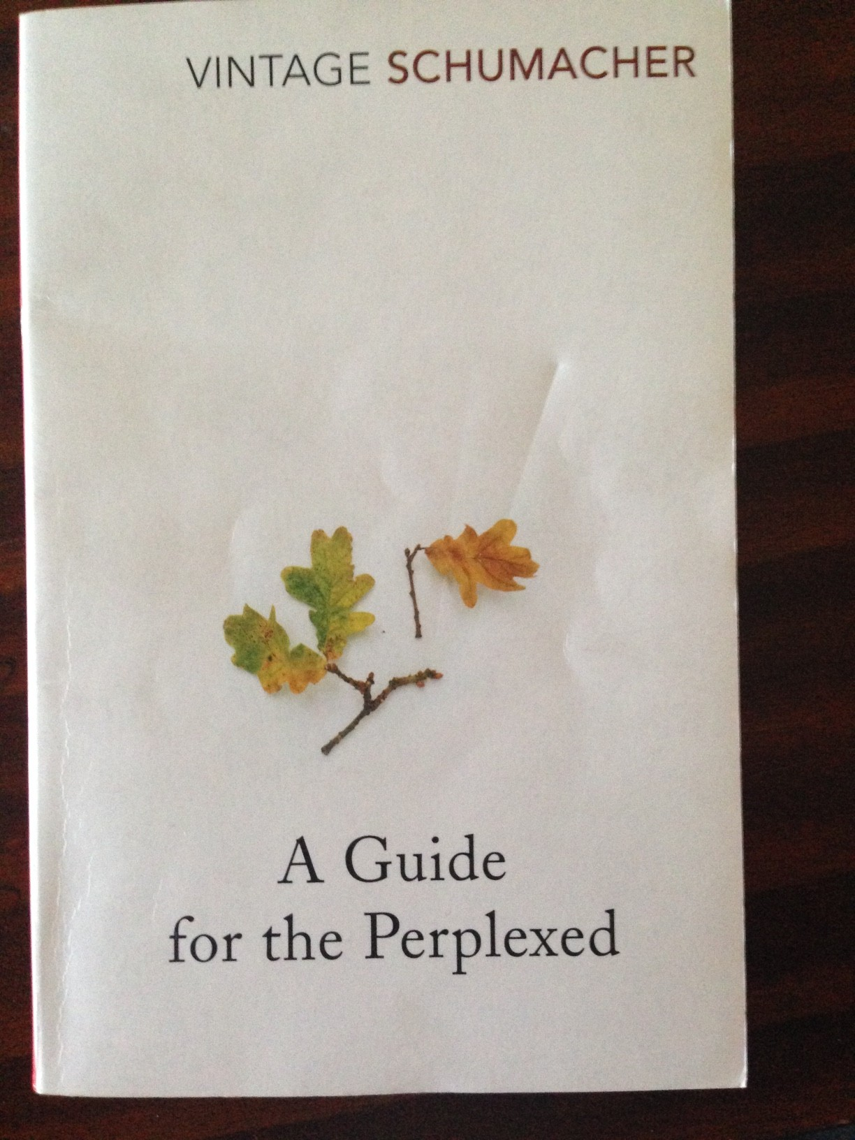 Buy a guide for the perplexed by e f schumacher with free delivery.
